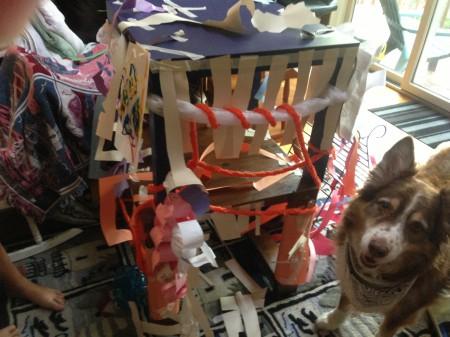 cat dojo house
