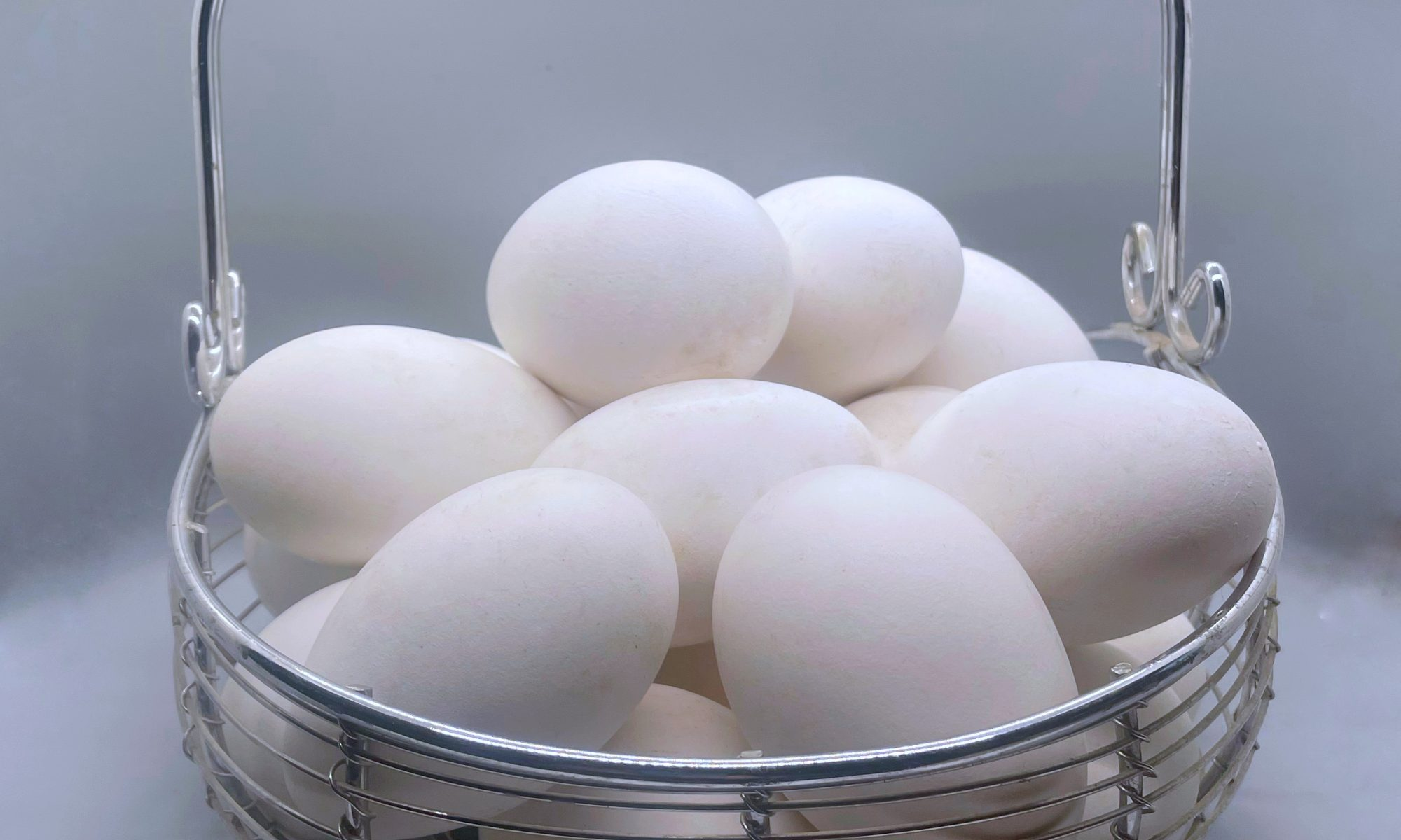 white goose eggs in a silver basket with a grey background
